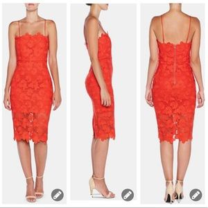 New! Bardot fire red lace bodycon dress #643
